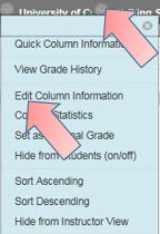 grade centre column info